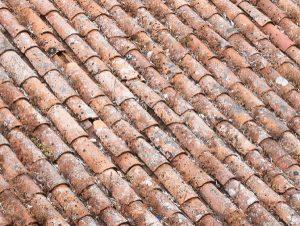 Zabrudzenia dachu